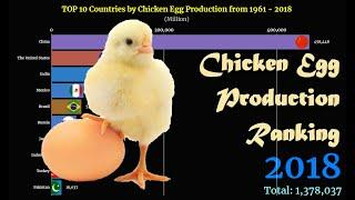 Chicken Egg Production Ranking | TOP 10 Country from 1961 to 2018