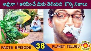 Top Interesting Facts in Telugu | Episode - 38 | Amazing and Unknown Facts in Telugu I PLANET TELUGU