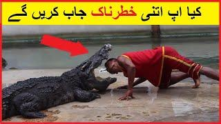 Most Dangerous Job in the World hindi / urdu || top dangerous job in the world