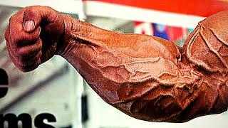 Top 10 Forearms In Bodybuilding History!