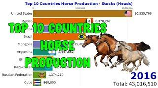 Top 10 Countries Horse Production - Stocks (Head) || World Statistics