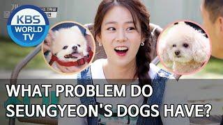What problem do Seungyeon's dogs have? [Dogs are incredible/ENG/2020.06.10]