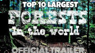 Top 10 largest forests in the whole world - Official trailer - TOP 10 SKSL