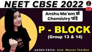 P Block Group 13 and 14 | Concept and NEET Questions | NEET 2022 Preparation | NEET Chemistry