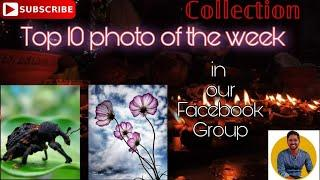 Top 10 photography in this week in our Facebook group Collection