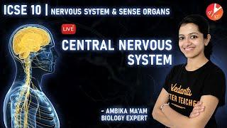 Nervous System and Sense Organs Class 10 L1 | Central Nervous System ICSE Biology | Vedantu Class 10
