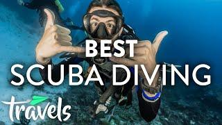 Top 5 Caribbean Scuba Diving Destinations | MojoTravels
