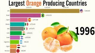 World Largest Orange Producing Countries in the World (1995) (2020) Top 10 Waves