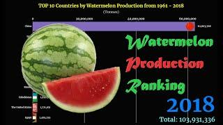 Watermelon Production Ranking | TOP 10 Country from 1961 to 2018