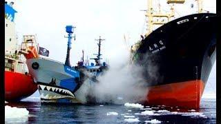 Top 10 Ships Crashing! Ship Accidents