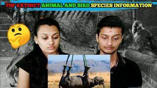 Reaction Makers | Top Extinct animal and bird species information | दुनिया की 5 विलुप्त प्रजातियां