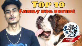 Top 10 family Dog breeds in Assam || Popular Dog breeds in Assam || Santanu's Pets Assam