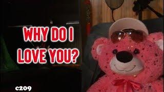 Declarations Of Love Quotes - Why do I love you?