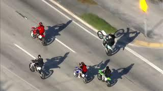 NO LAWS IN MIAMI: ILLEGAL Riders Take Over The Streets As Police Stand Idle