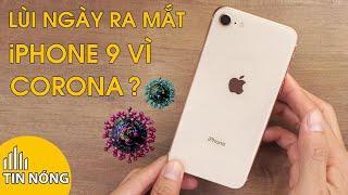 Tin nóng: Hoãn iPhone 9 lại vì Virus Corona còn iPhone 12 gây bất ngờ với bản iPhone 12 Mini.