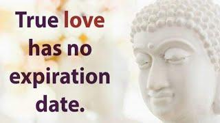 Life changing Lord Buddha Quotes about Love ♥️ | Life & Relationship in English : Learn English