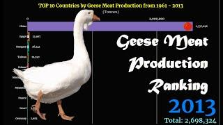 Geese Meat Production Ranking | TOP 10 Country from 1961 to 2013