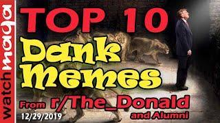 TOP 10 MEMES President Trump in the Lion's Den