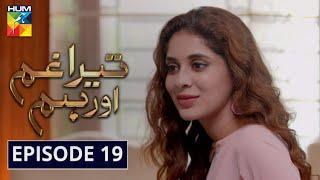 Tera Ghum Aur Hum Episode 19 HUM TV Drama 2 September 2020