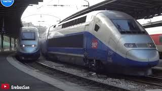 Top 10 Fastest Train in The Word