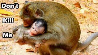 Anna B I T Alba No Reason | Alba Cries Loudly Hurt On Head,Anna So Bad Mum In Monkey Motherhood