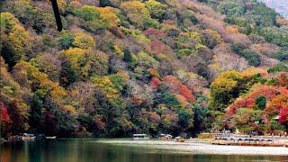 Arashiyama In Autumn | Kyoto Japan