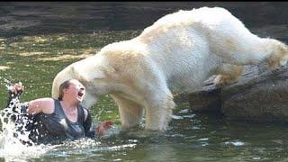 TOP 10 PEOPLE WHO FELL INTO ANIMAL ENCLOSURES AT ZOOS!