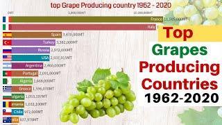 Top Grape Producing Country 1962-2020 | Grape Producing