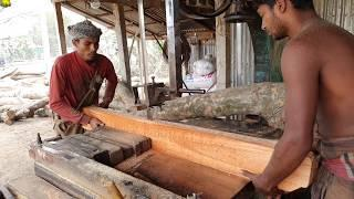 Small, Strength & Good Quality Mahogany Wood Cutting।Fast Way of Wood Cutting at Sawmill