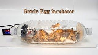 Water bottle Egg incubator #3 (페트병으로 부화기 만들기)