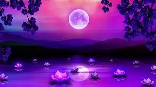 Good Night Music