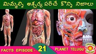 Top Interesting Facts in Telugu | Episode - 21 | Amazing and Unknown Facts in Telugu I PLANET TELUGU
