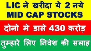Latest Mid cap stocks bought by LIC   multibagger shares 2020 India   share market news in hindi