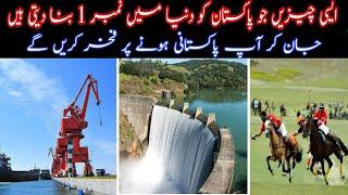 10 Things Which Make Pakistan a Top Country in the World | infoio