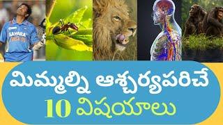 Top 10 interesting facts in Telugu    unknown and amazing facts    ssv sandeep mind
