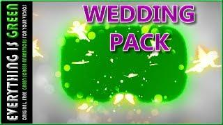wedding pack love angel  3 Green Screen after effects Premiere pro Chroma Key Royalty Free