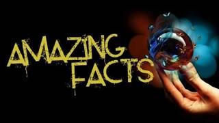 Top 10 amazing facts in the world | Unknown amazing facts | in hindi