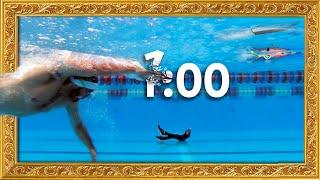 Freestyle swimming technique: Breaking 1 minute in 100 meters | Boat freestyle