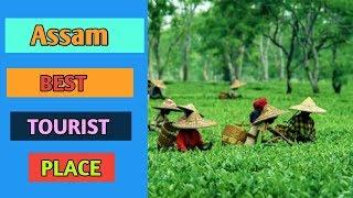 Assam(असम )Top Best Tourist Place To Visit