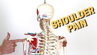 Change This One  Simple Thing Or Your Shoulder Pain NEVER Goes Away