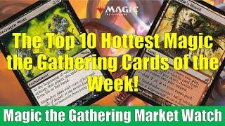 MTG Market Watch Top 10 Hottest Cards of the Week: Auntie's Hovel and More