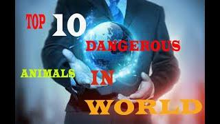 TOP 10 DANGEROUS ANIMAL IN WORLD  || AMAZING FACT || ACCORDING TO GOOGLE || INFORMATION