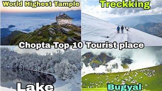 चोपता ( mini switzerland ) में घूमने के 10 सबसे खूबसूरत स्थान /top 10 tourist Place in chopta UK