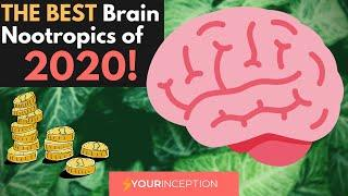 Which Are The BEST Brain Nootropics of 2020? GET On The TOP!