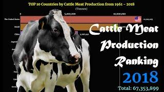 Cattle Meat Production Ranking | TOP 10 Country from 1961 to 2018