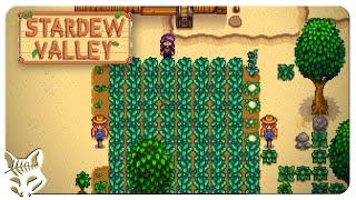 Stardew Valley Min/Max Beach Farm | IS IT POSSIBLE? | Let's Play Stardew Valley Patch 1.5 Ep 06