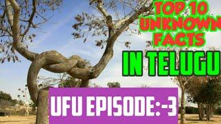 Interesting 10 facts in telugu langauge/top 10 unknown facts