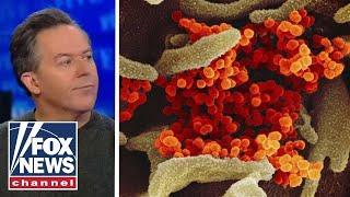 Gutfeld on the media reaction to the coronavirus