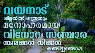 Tourist Place In Wayanad | Best Place In Wayanad Kerala | Top 10 Places In Wayanad April 24, 2020