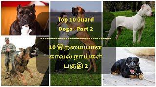 Top 10 Guard Dogs - Part 2   10 திறமையான காவல் நாய்கள் பகுதி 2